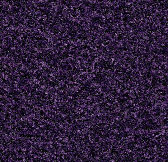 brush_new_5709_royal_purple