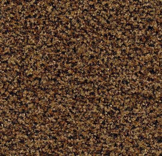 brush_new_5716_masala_brown